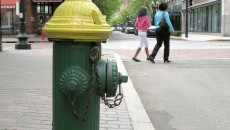 Yellow and green fire hydrant